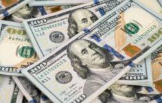 Dolar, Merkez Bankası\'nın faiz kararı sonrası geriledi
