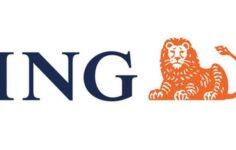 Ing Bank İhtiyaç Kredisi