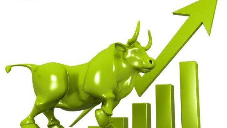 Boğa Piyasası Nedir?