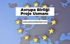 Avrupa Birliği Proje Uzmanı Nasıl Olunur, Ne İş Yapar