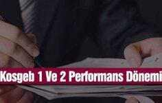 Kosgeb 1 ve 2 Performans Dönemi Nedir?