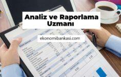 Analiz ve Raporlama Uzmanı Nasıl Olunur, Ne iş yapar